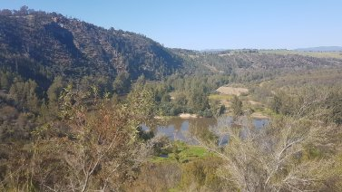 The Murrumbidgee © Tracey M Benson 2020