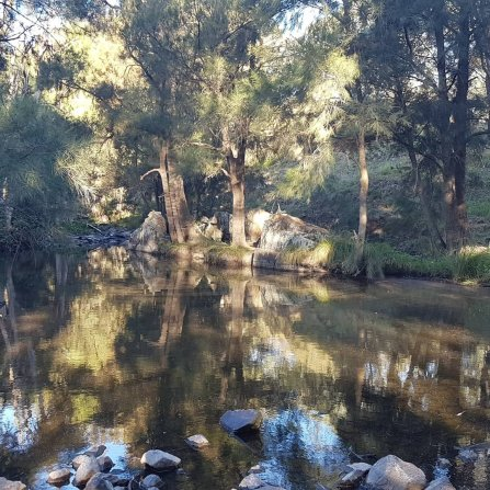 Walking meditation along Tuggeranong Creek, Urambi © Martin Drury