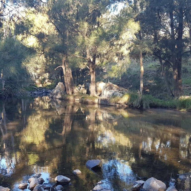 Walking meditation along Tuggeranong Creek, Urambi © Martin Drury